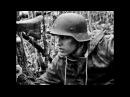 Brainwash Glorious Soldiers