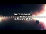 Wasted Penguinz - Black &amp White (Extended Mix)