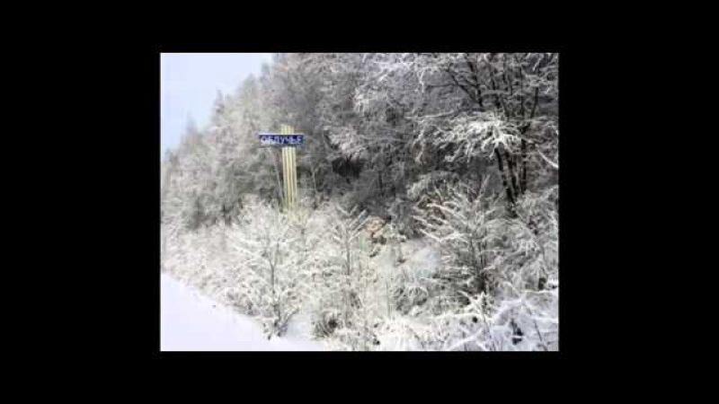 Деревня в лесу г Облучь