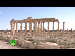 Древняя Пальмира: Корреспондент RT побывал в исторической части отвоеванного города