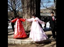 Shane Horan on Instagram Wedding party linking hands around a 900 year old zelkova tree in Kaesong northkorea""