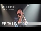Woodkid live in Zagreb (2012)