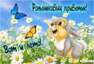 Лето! Привет!