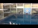 Кубок России 2016 по прыжкам в водувышка 10m мужчинылучшие