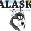 Компьютерная вышивка (студия ALASKA)