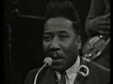 Muddy Waters  James Cotton- Got My Mojo Working 1966
