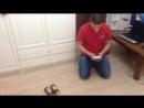 Гроза котов с Bluetoth датчиком