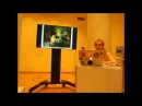 Лекция №5 из цикла Перед картиной Импрессионизм пуантилизм фовизм