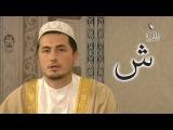 Арабский язык видео обучение уроки 1