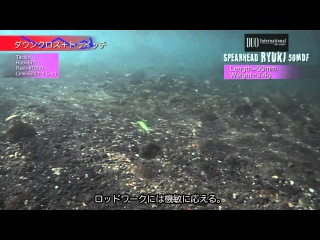 DUO`s Lures in Motion #33: Spearhead Ryuki 50MDF