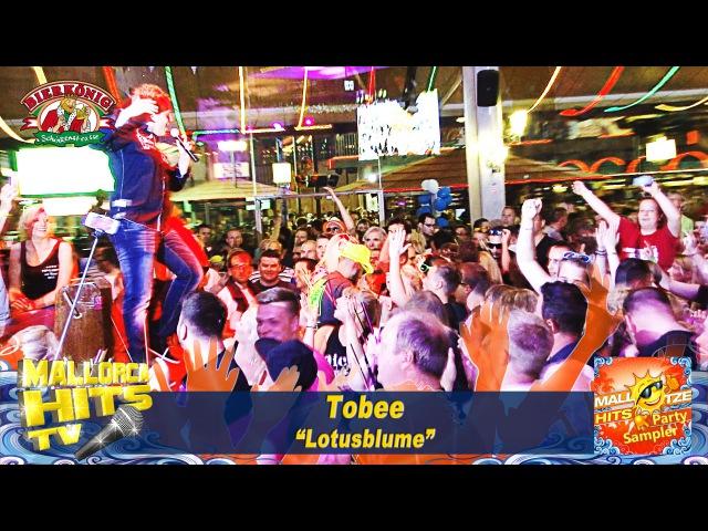 Tobee - Lotusblume - Ballermann Hits