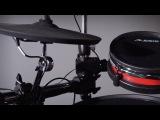 Alesis Crimson Mesh Kit Overview