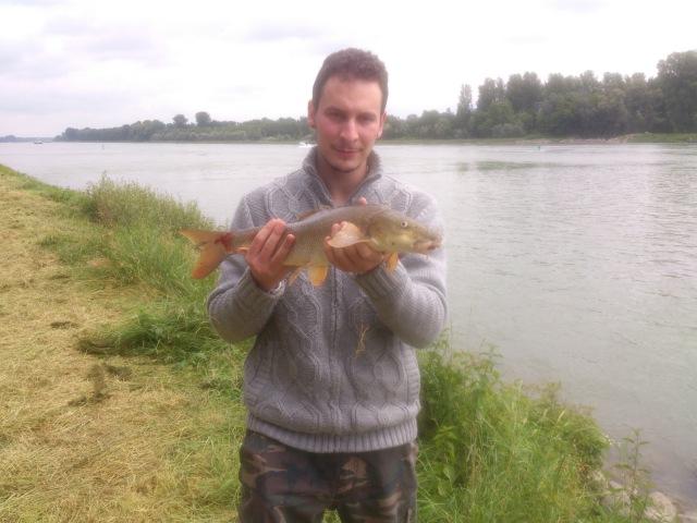 Рыбалка на леща и усач Angeln auf Brasse und Barbe ブリームとバーベルの釣り。