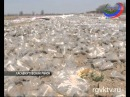 Жители села Сивух Хасавюртовского района спалили теплицу китайцев