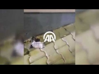 Cumhurbaşkanı Erdoğan'ın Marmaris'te kaldığı otele saldırı anı
