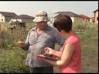 Рейды трудовой инспекции в Губкине