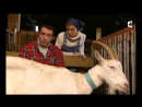 Un gars une fille - Gîte à la ferme