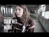 Sea Of Bees - Wizbot (The Old Vinyl Factory Sessions)