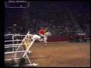Nick Skelton on Lastic - Record jump on 2.32 m