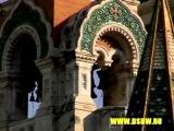 Турагентство   Аквариум     туризм Франция, Ницца Nice