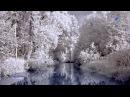 ♡ It's Snowing - SERGEY CHEKALIN (beautiful, relaxing music)