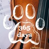 365 days of music