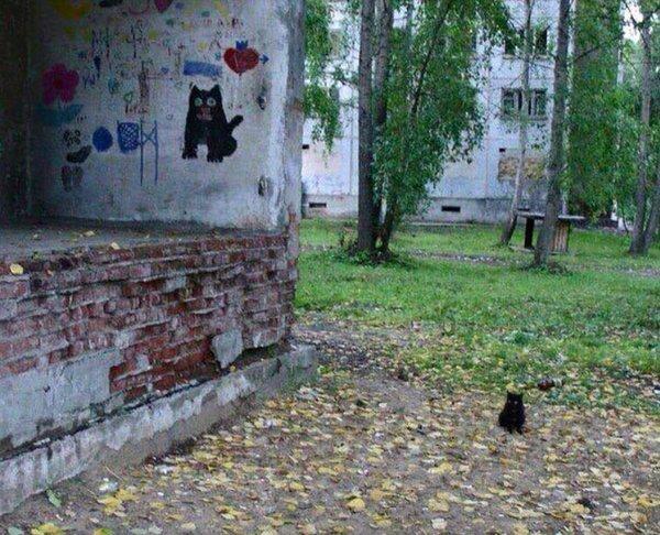 Древнее пророчество о пришествии Великого Чёрного Котейки сбылось
