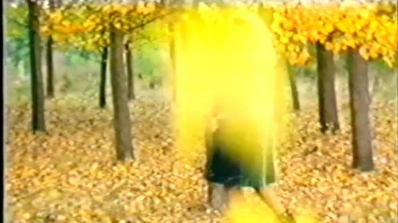 Тони Дачева орк. Кристал - Как бързо времето лети (1995)