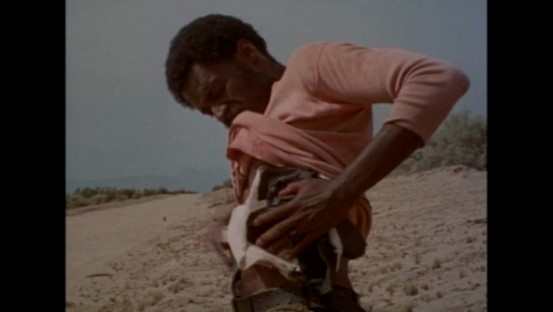 Sweet Sweetback's Baadasssss Song (1971)