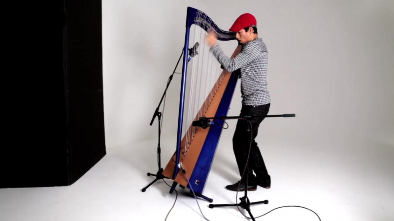 Harpist Edmar Castañeda perform a traditional Colombian folk song