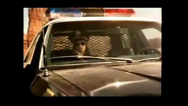 Реклама 90-е годы (видео подборка). Ностальгия.