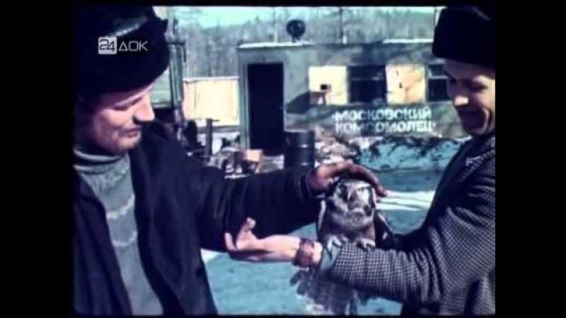 Кинолетопись БАМа — Фильм 2-й — Серебряный рельс (1975) » Freewka.com - Смотреть онлайн в хорощем качестве