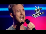 Charly Luske - This Is A Man's World (The Blind Auditions | The voice of Holland 2011)