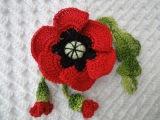 Мак с бутонами Poppy with buds Crochet