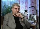 Профессор Савельев о переводах Гоблина