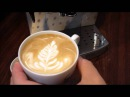 Delonghi ECAM Latte art basic course 拿鐵拉花入門 by Arctic Coffee 北極海咖啡