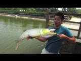Yellow Cheek fishing on Pearl Lake Shanghai China with Gong Lei