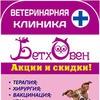 Ветеринарная клиника Бетховен - Нижний Новгород