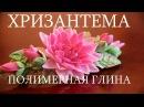 ХРИЗАНТЕМА ПОЛИМЕРНАЯ ГЛИНА МАСТЕР КЛАСС DIY CHRYSANTHEMUM OF POLYMER CLAY