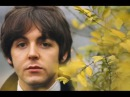 The Beatles - Mother Nature's Son - Lyrics