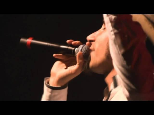 Serj Tankian Feed Us Live |HD| |WideScreen|