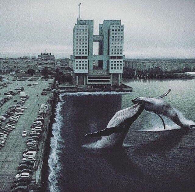 Sergey Russkih   Минск