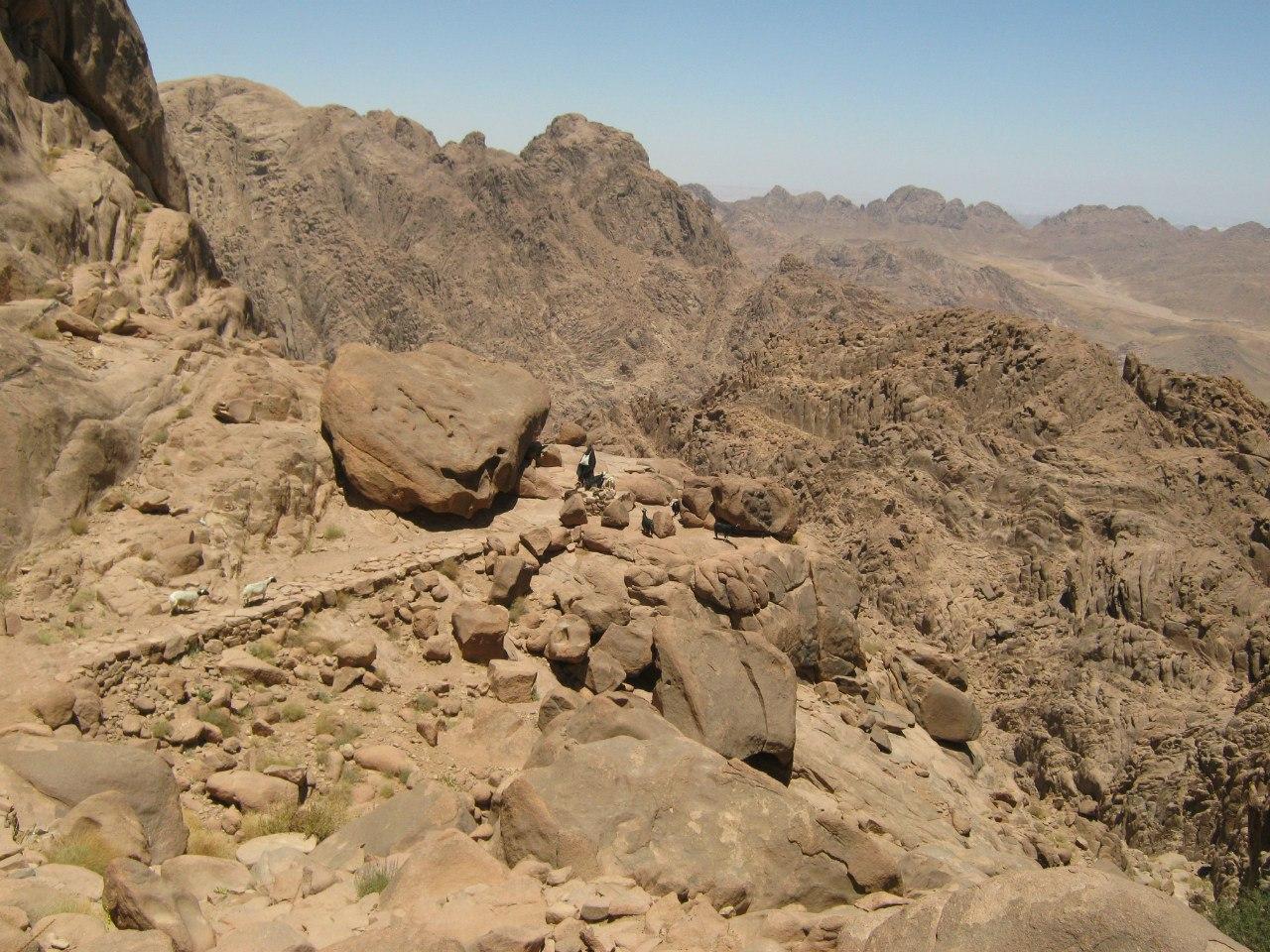 древняя тропа на гору Моисея