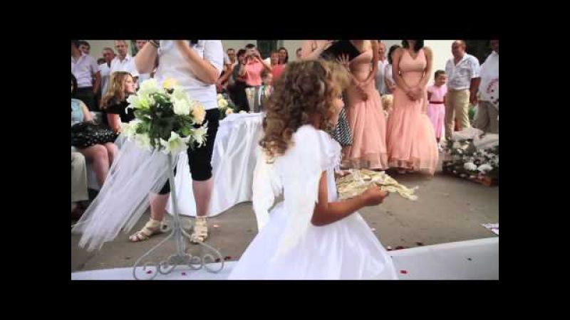 Роспись Софиевский парк свадьба ( Умань )