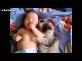 Лучшее! Кошки и собаки защищают детей!