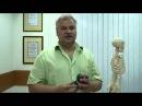 Эпикондилит лечение эпикондилита локтевого сустава народными средствами и ме