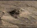 Mars Pyramid: Mars Face, Curiosity Rover