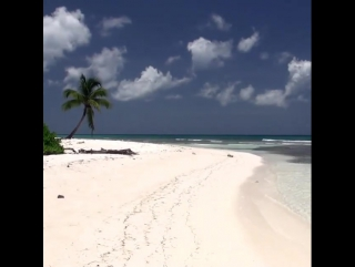 Beautiful white sand beaches of Dominican Republic
