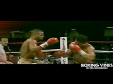 Roy Jones.VINE by G U M A