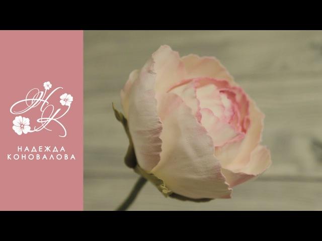 Цветы из фоамирана как сделать розу Дольче Вита из фоамирана